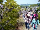 福島の子ども保養プロジェクト